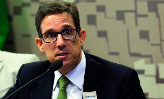 Itaueira planeja voltar a produzir melões no Ceará em 2021, adianta Tom Prado